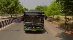 City Bus Services